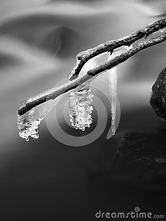 Free Night Winter View To Icicles On Twigs And Icy Boulders Above Rapid Stream. Reflections Of Head Lamp In Icicles. Black And White. Royalty Free Stock Images - 35092289