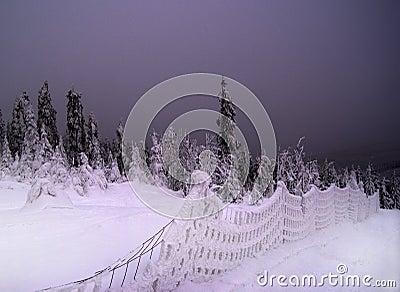 Nightfall, Snowy Landscape