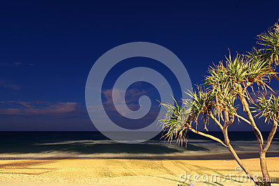 Tropical beach landscape at night