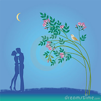 Nightly walk of falling in love
