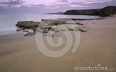 Nigth coast landscape