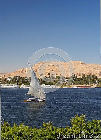 Nile Falluka