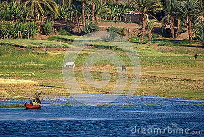 Nile shore panorama