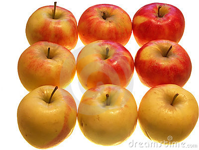 Nine Apples Royalty Free Stock Photography - Image: 3385457