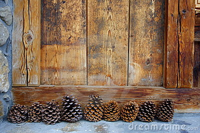 Nine pine cones and wood