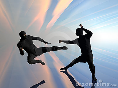 Ninja δύο πάλης