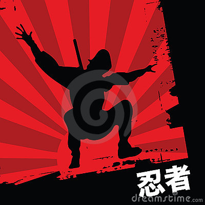 Free Ninja Stock Photos - 8688723