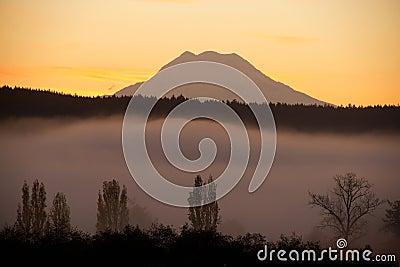 Nisqually Valley fog Mt Rainier Sunrise