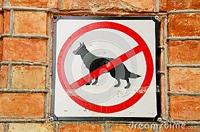 No dogs.