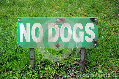 NO DOGS - sign on lawn