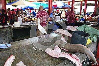 No mercado de peixes em Victoria, Seychelles Foto Editorial