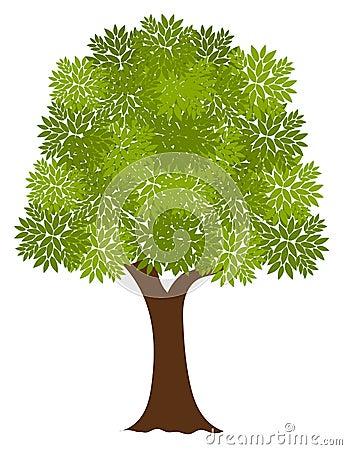 Noble tree