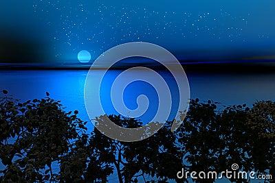 Noche del sur
