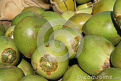 Noci di cocco fresche