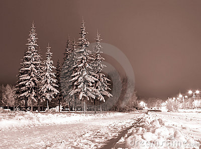 Noite do inverno.