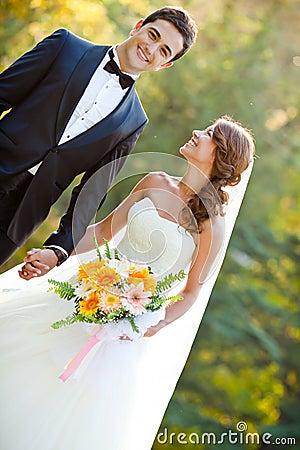 Noiva E Noivo Felizes Fotografia de Stock - Imagem: 17806732