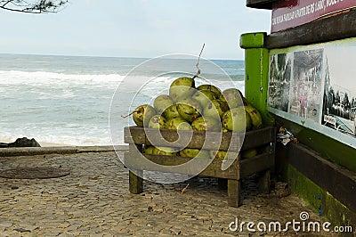 Noix de coco au Brésil
