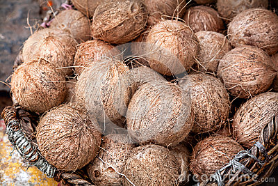 Noix de coco au marché indien