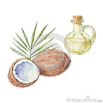 Noix de coco et une bouteille du dessin d 39 huile de noix de - Dessin noix de coco ...