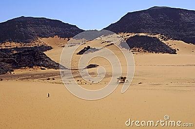 Nomad crossing a vast desert landscape
