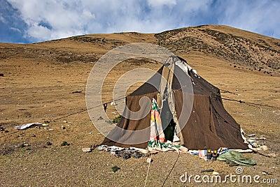 Nomad tent