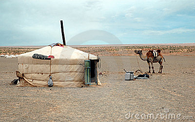 Nomad Tent and Camel