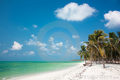 Тропический рай острова