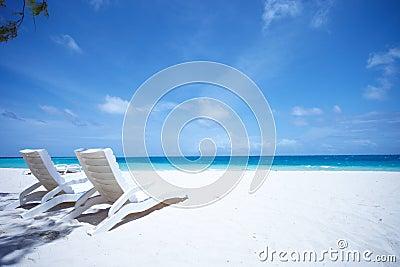 热带海滩睡椅的休息室