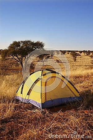 帐篷原野黄色