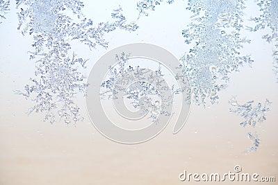 картина заморозка