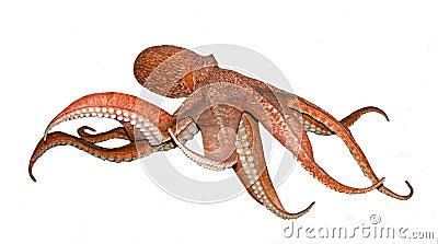 章鱼白色蜘蛛侠种子归来bt英雄图片