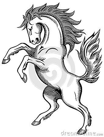 лошадь чертежа
