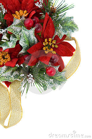圣诞节装饰金一品红丝带