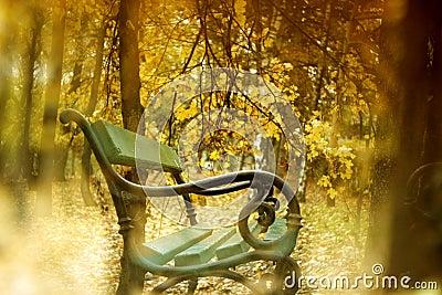 秋天公园风景