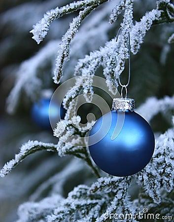 中看不中用的物品蓝色结霜的季节性&#