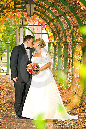 夫妇亲吻的婚礼
