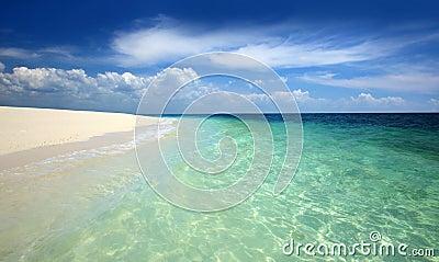 пристаньте тропическое к берегу