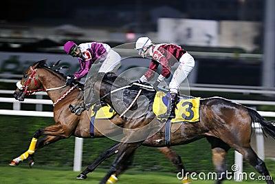 гонка лошади отделки Редакционное Фотография