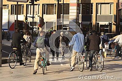 улица людей скрещивания