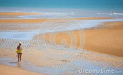 金黄的海滩发送