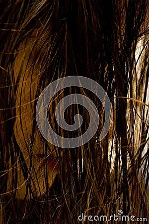 волосы влажные