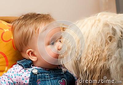 μεγάλο σκυλί μωρών