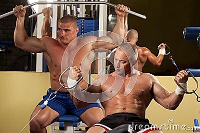 делать поднятие тяжестей человека гимнастики мышечное