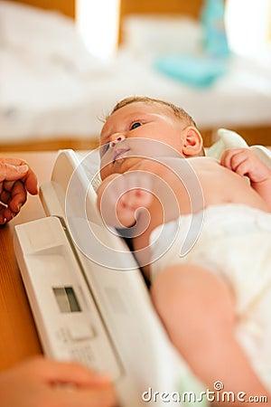 婴儿磅秤重量