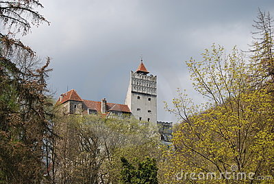 麸皮城堡地标罗马尼亚