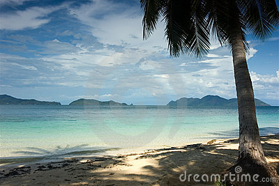 热带的天堂
