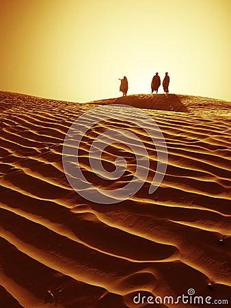 展望期撒哈拉大沙漠