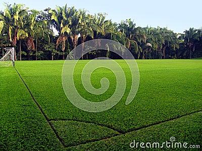пустой футбол поля