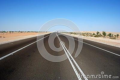 沙漠高速公路