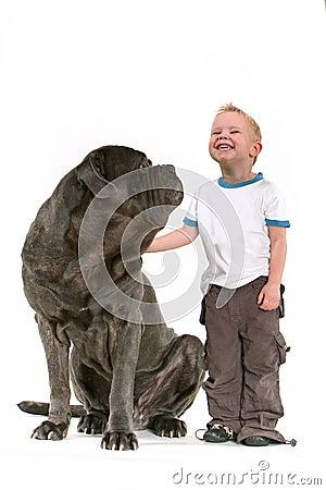 большая собака мальчика немногая